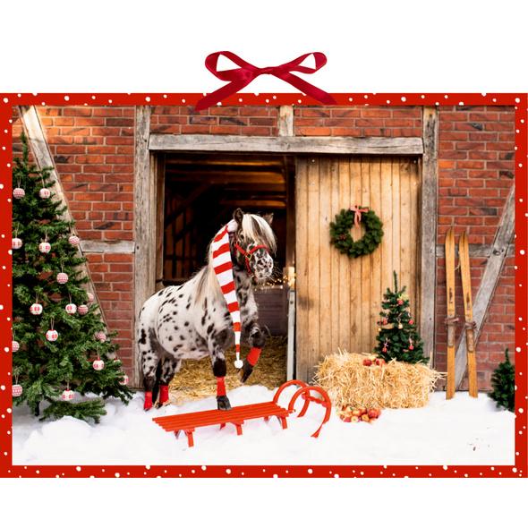 Dotti feiert Weihnachten, Adventskalender