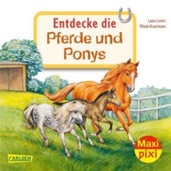 Entdecke die Pferde und Ponys